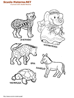 Animali Vari 02