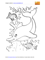 Animali Marini Delfino Pesci