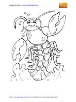 Animali Marini Gambero