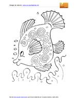 Animali Marini Pesce