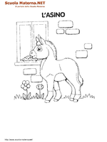 Asino In Giardino