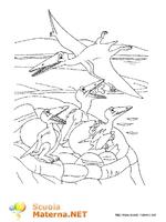 Dinosauri 2013 4