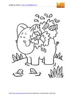 Elefante Docciato