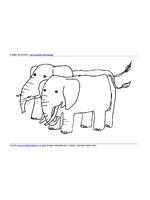 Elefanti Coppia