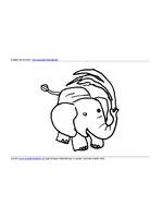 Elefantino Acqua