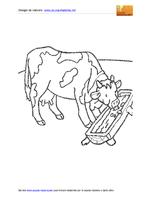Mucca Mangiona