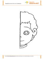 Simmetria il mio viso