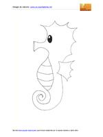 Cavalluccio marino gigante