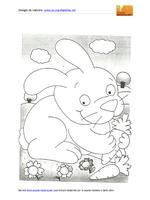Coniglio affamato di carote