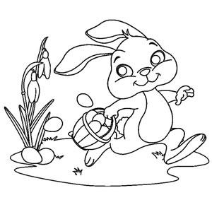 Coniglio con cesto