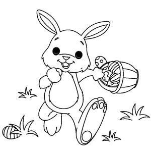 Coniglio corre