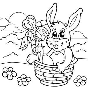 Coniglio nel cesto